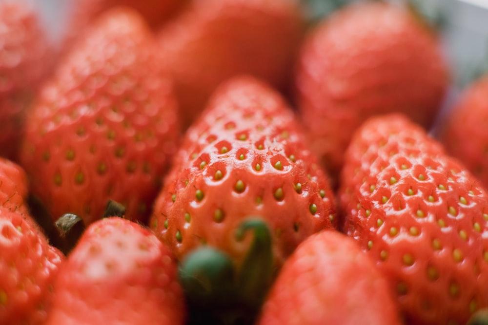 shallow focus photo of strawberries
