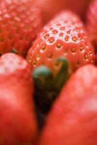 closeup photo of strawberry