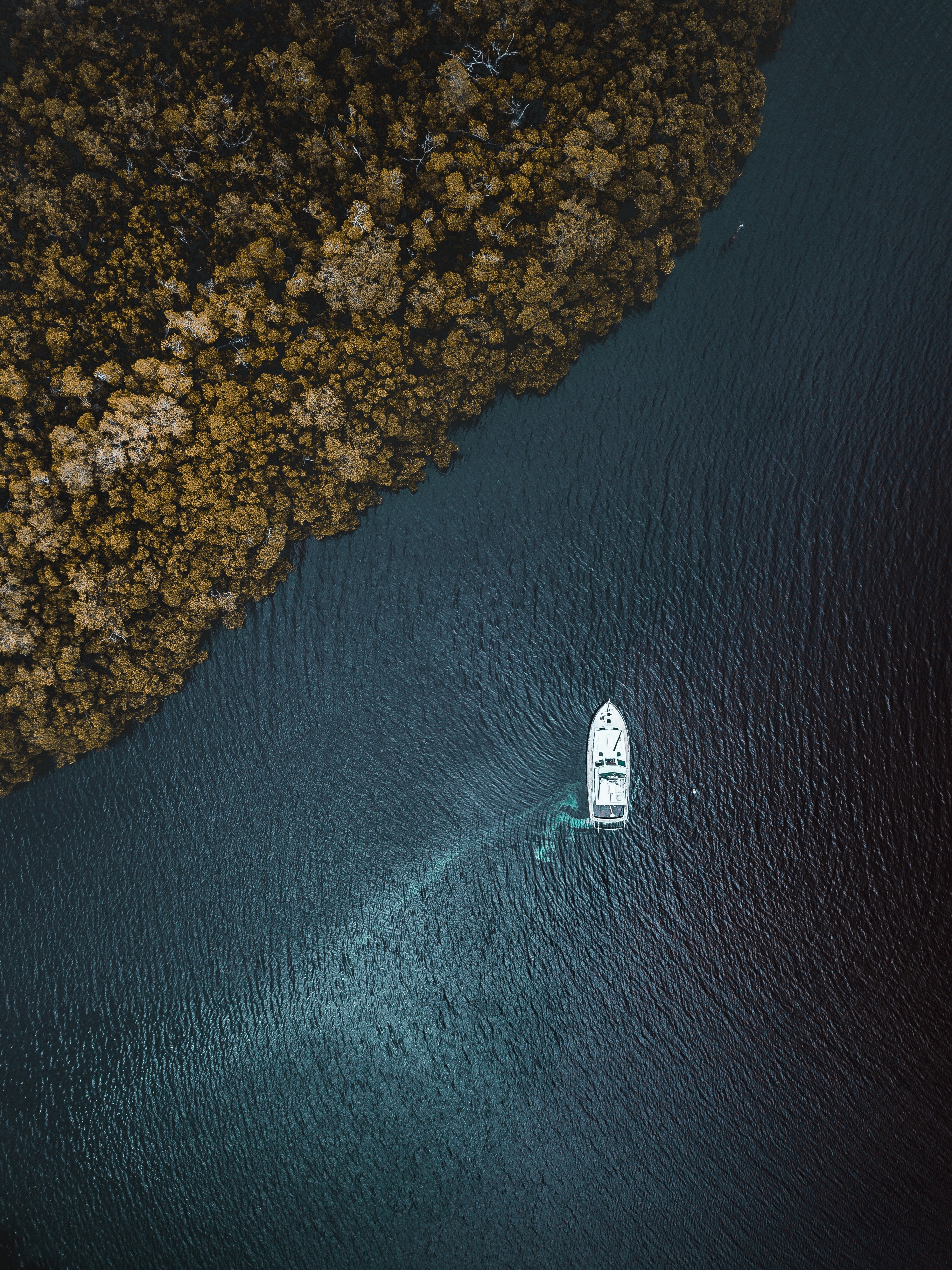 bird's-eye view of boat on body of water