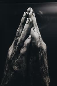 Vile Hands poetry stories