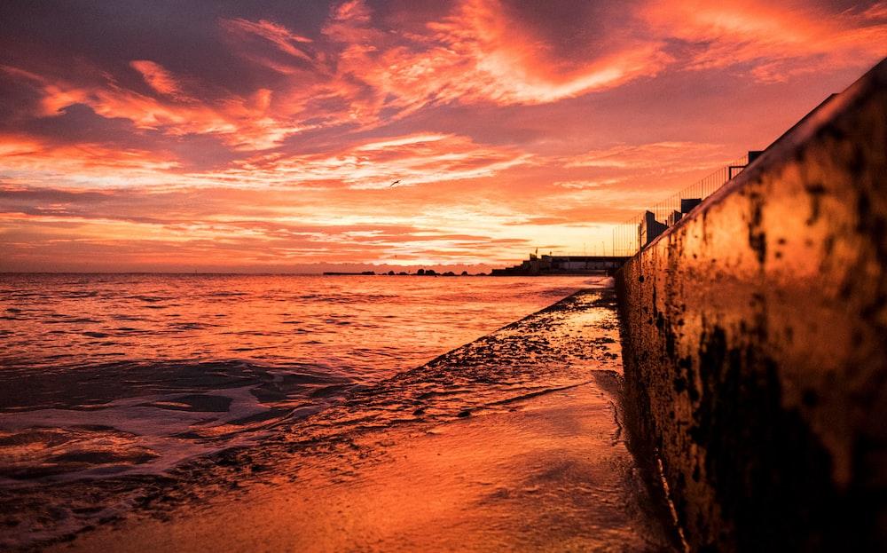 seashore under golden hour