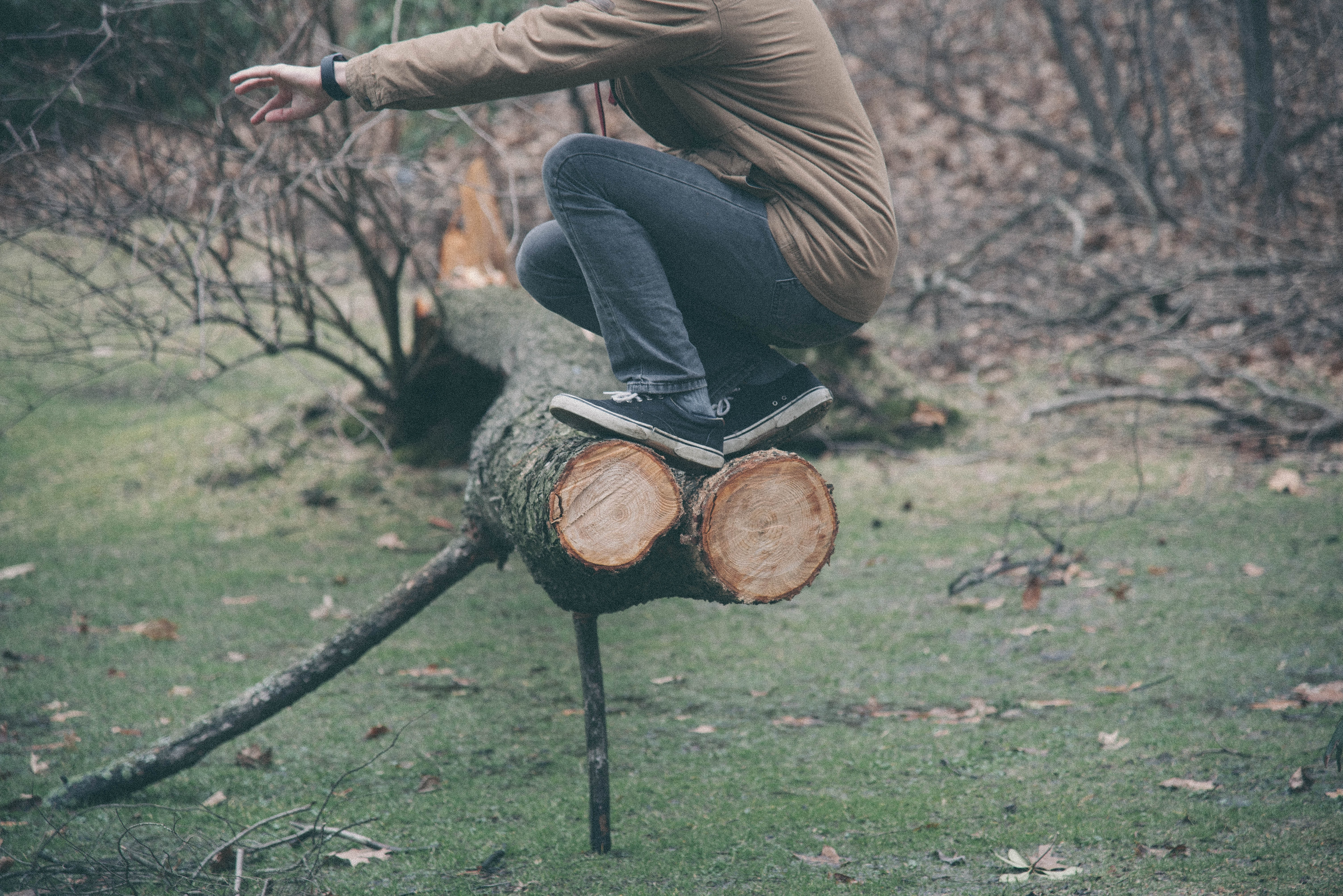 person sitting on brown tree log