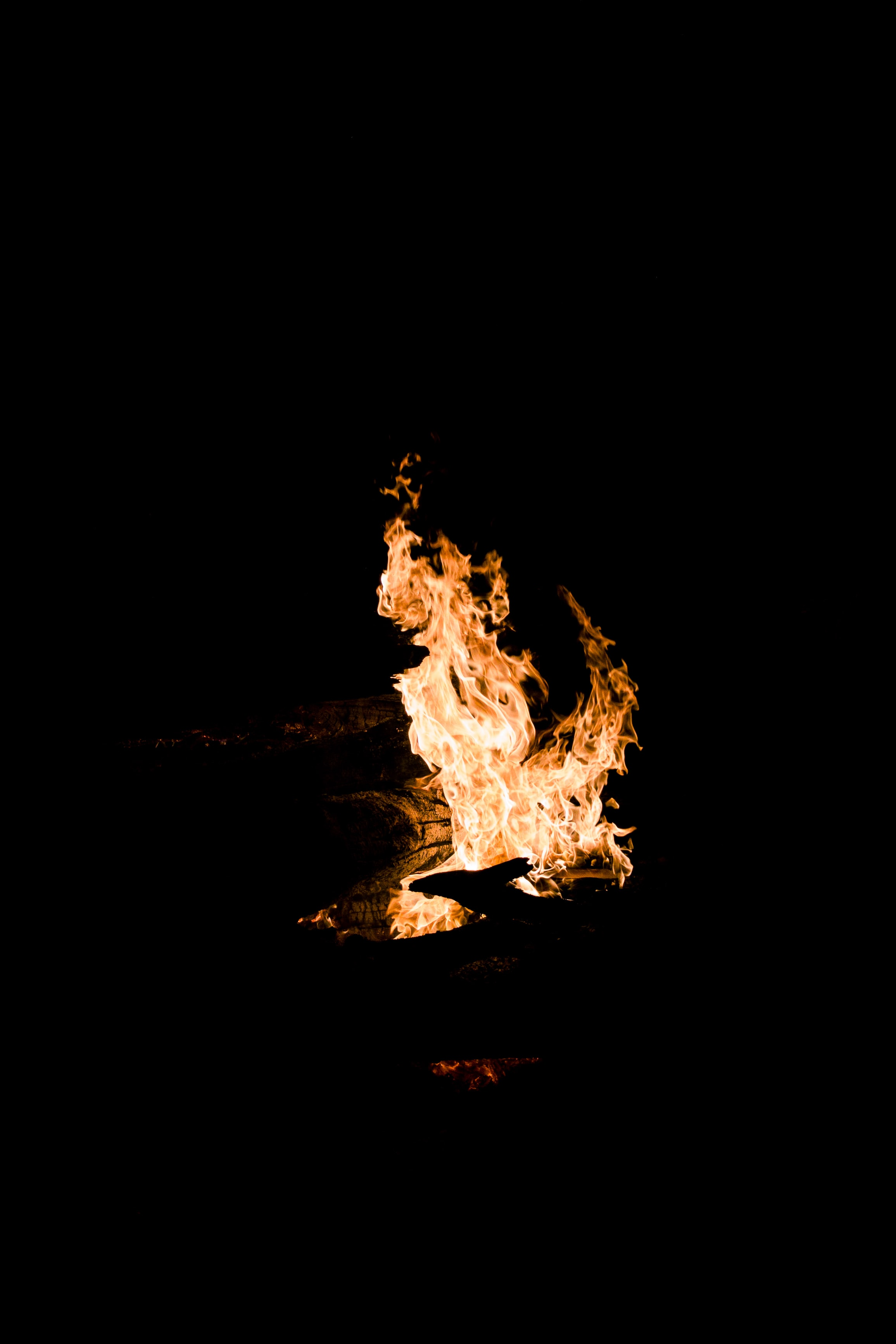 burning bonfire at nighttime