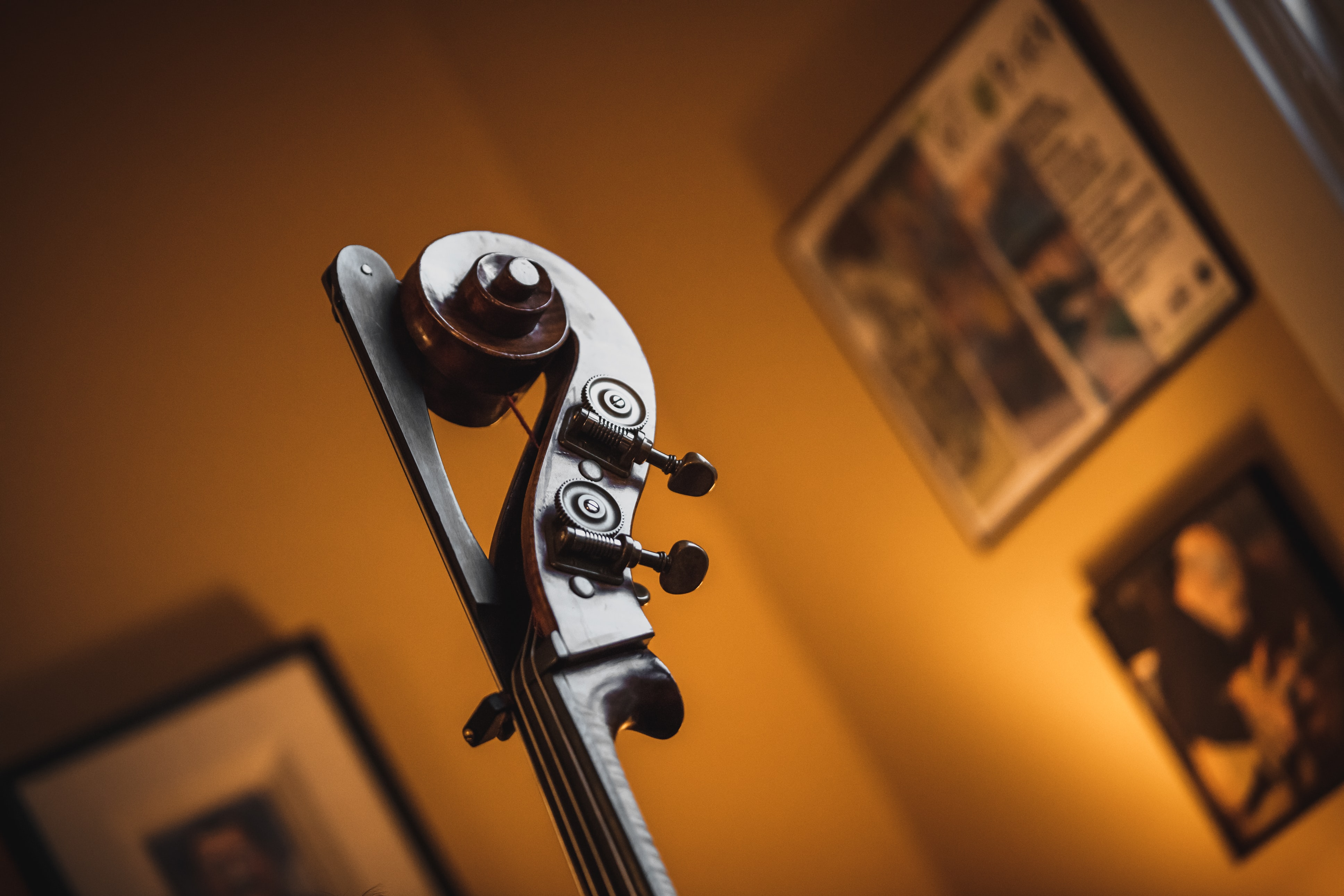 violin headstock