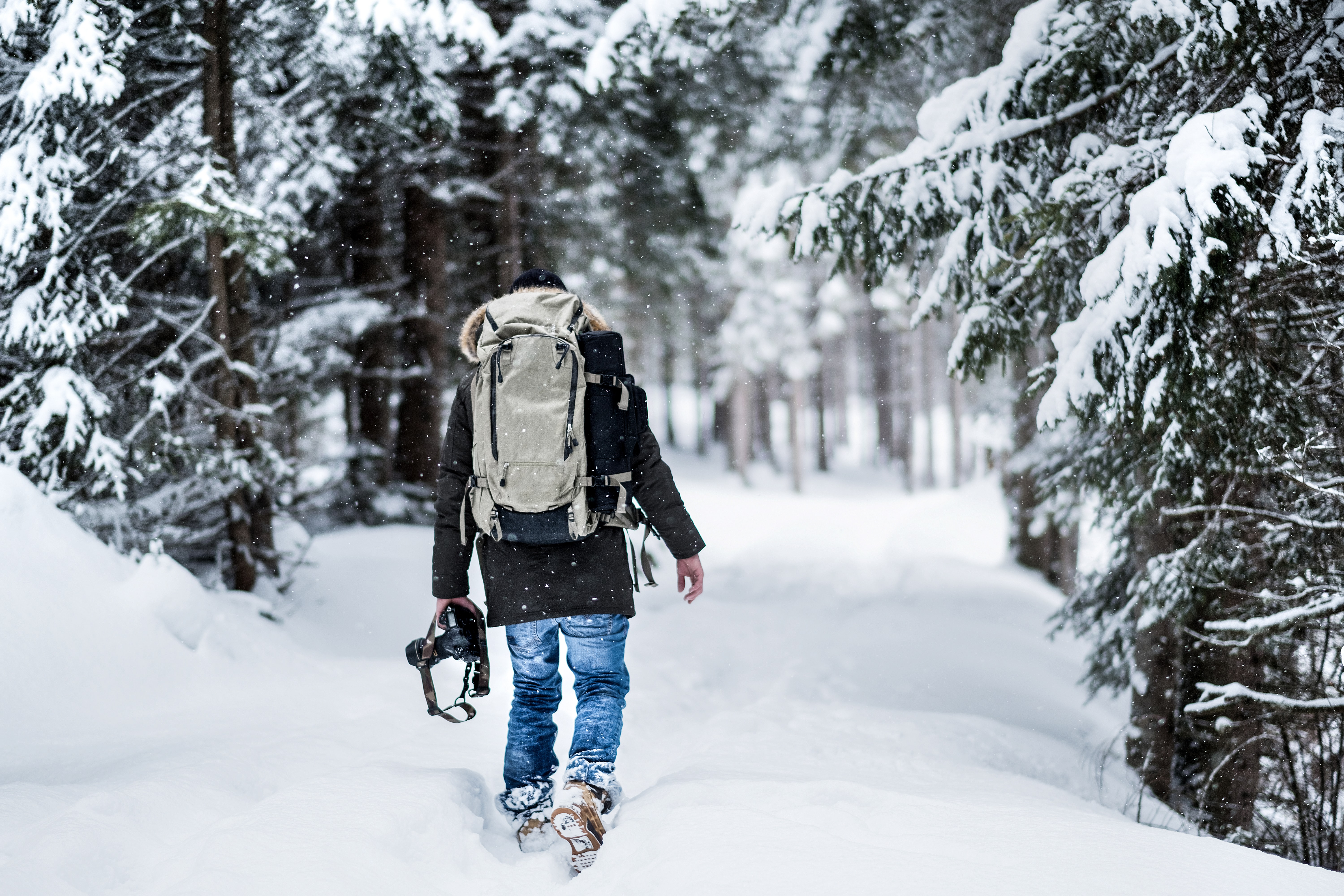 man walking on snow near pine trees covered by snow during daytime