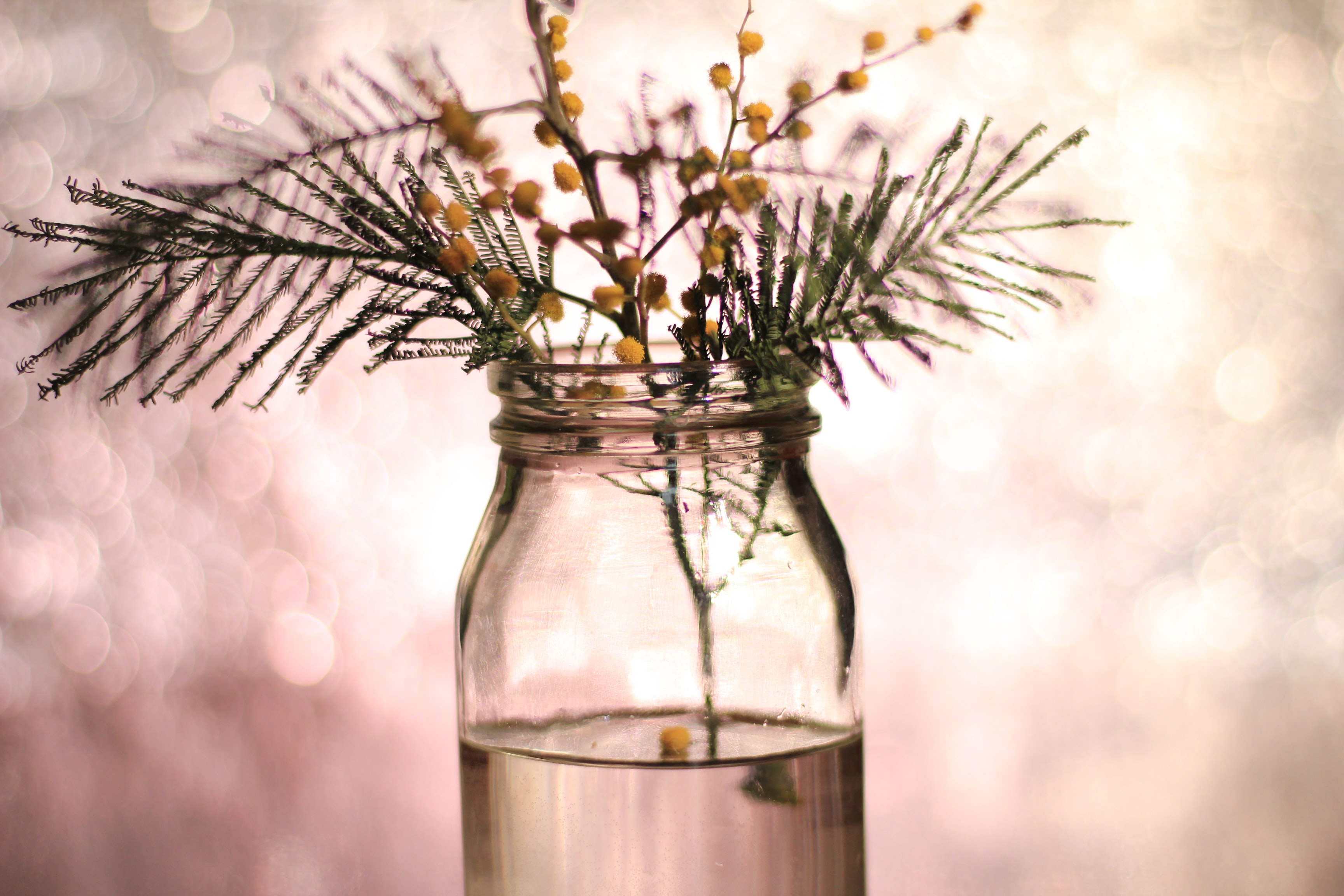 depth photography of clear glass bottle with yellow flowers