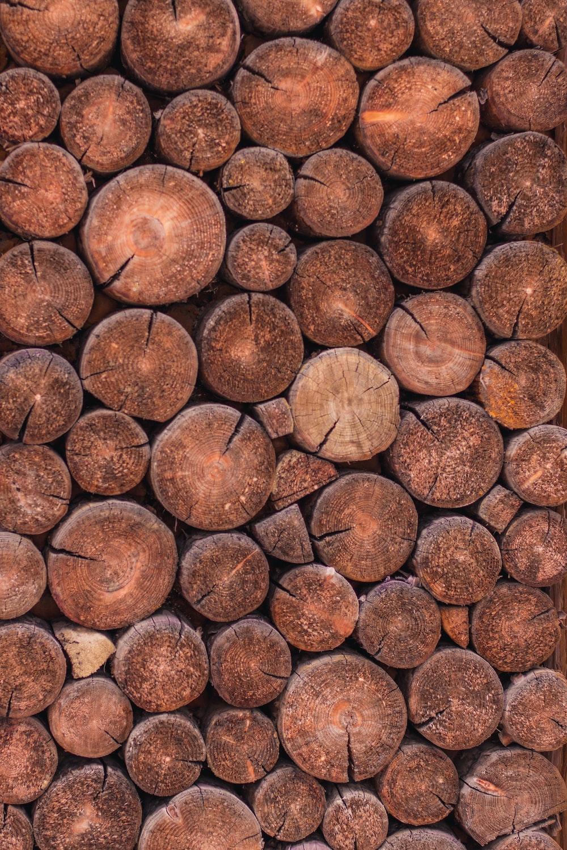 cut log stomps