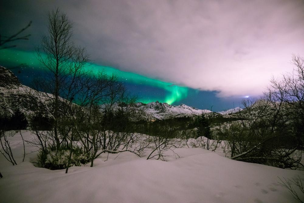 auroa borealis