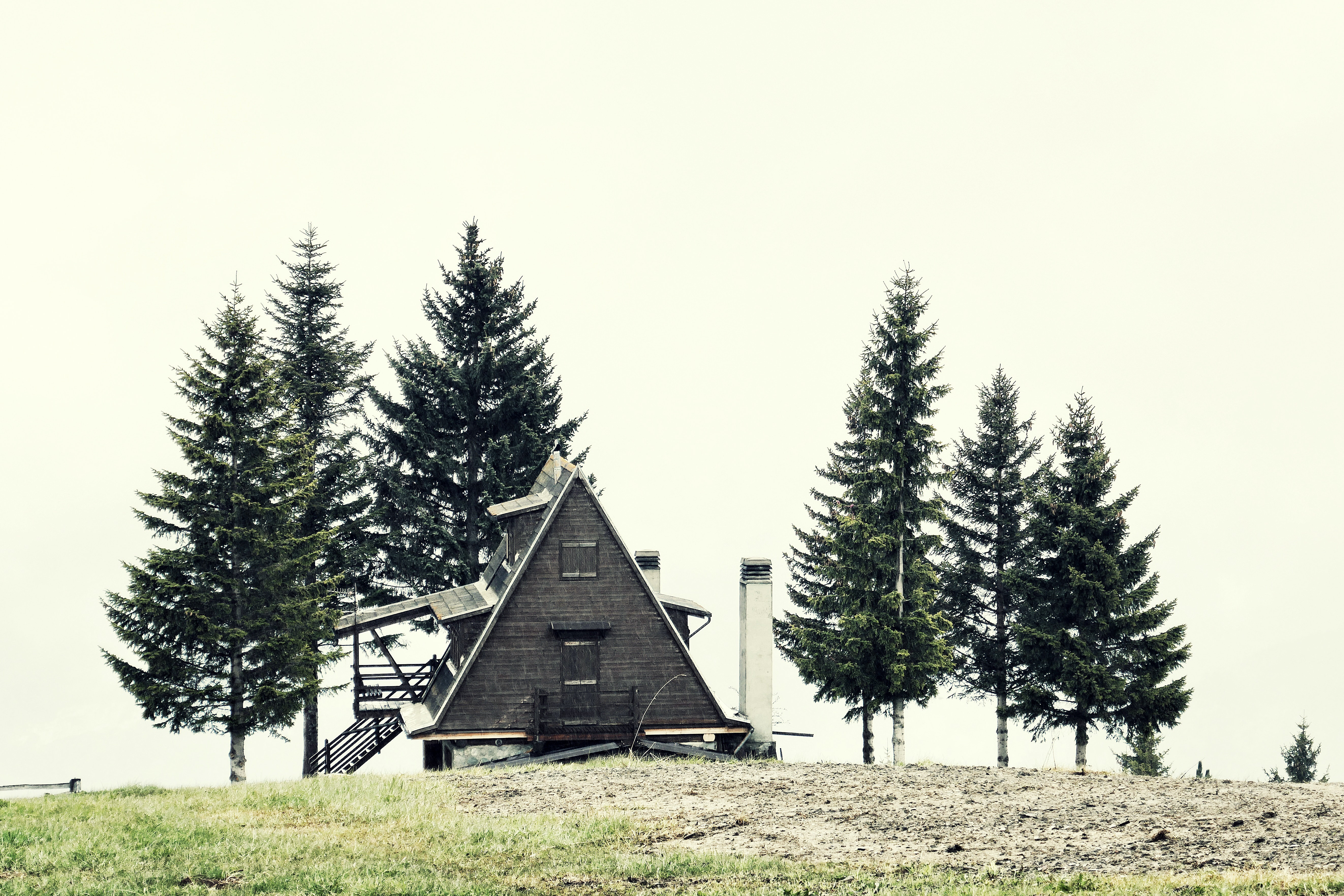landscape photography of house surrounded pine trees