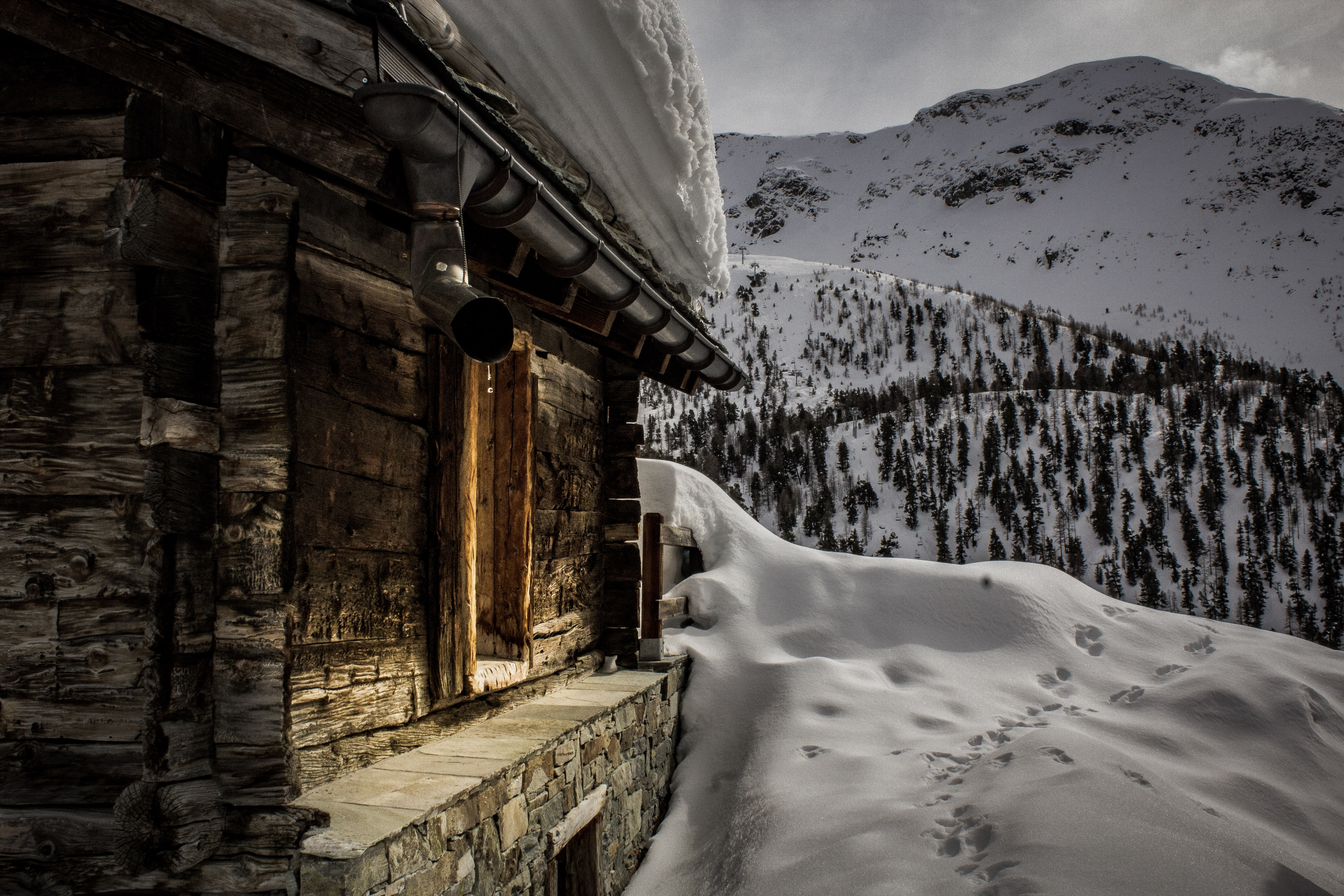 closeup photo of brown building filled with snow