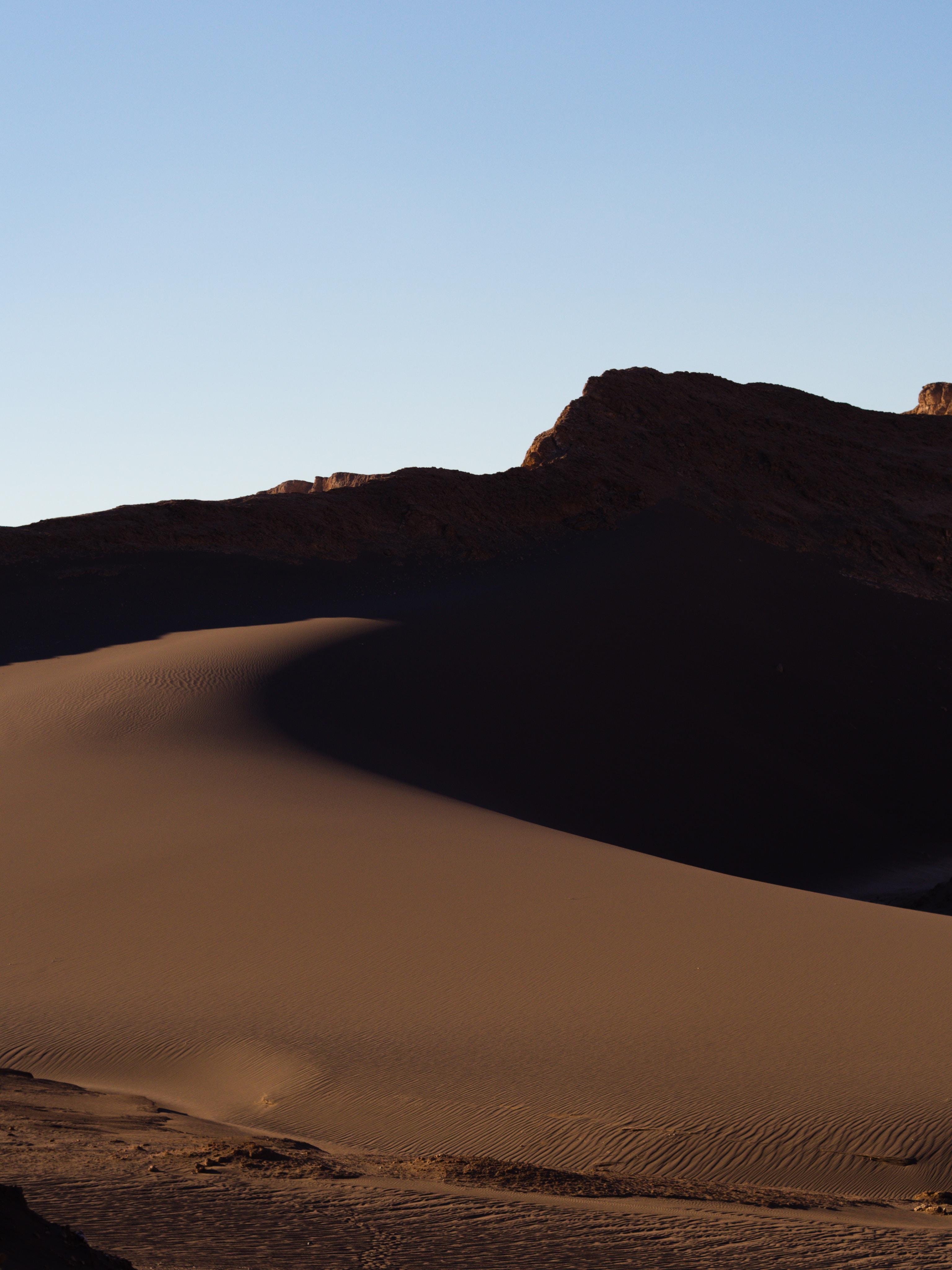 photo of brown desert during golden hour