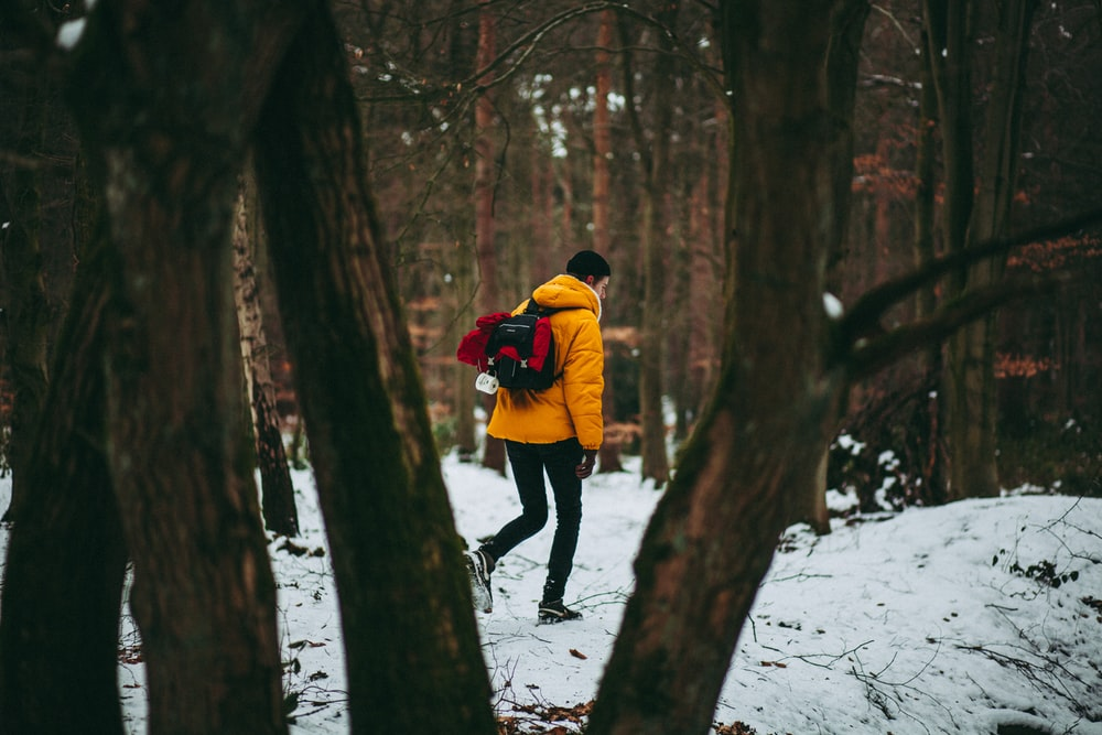 person standing on snow surrounded by trees