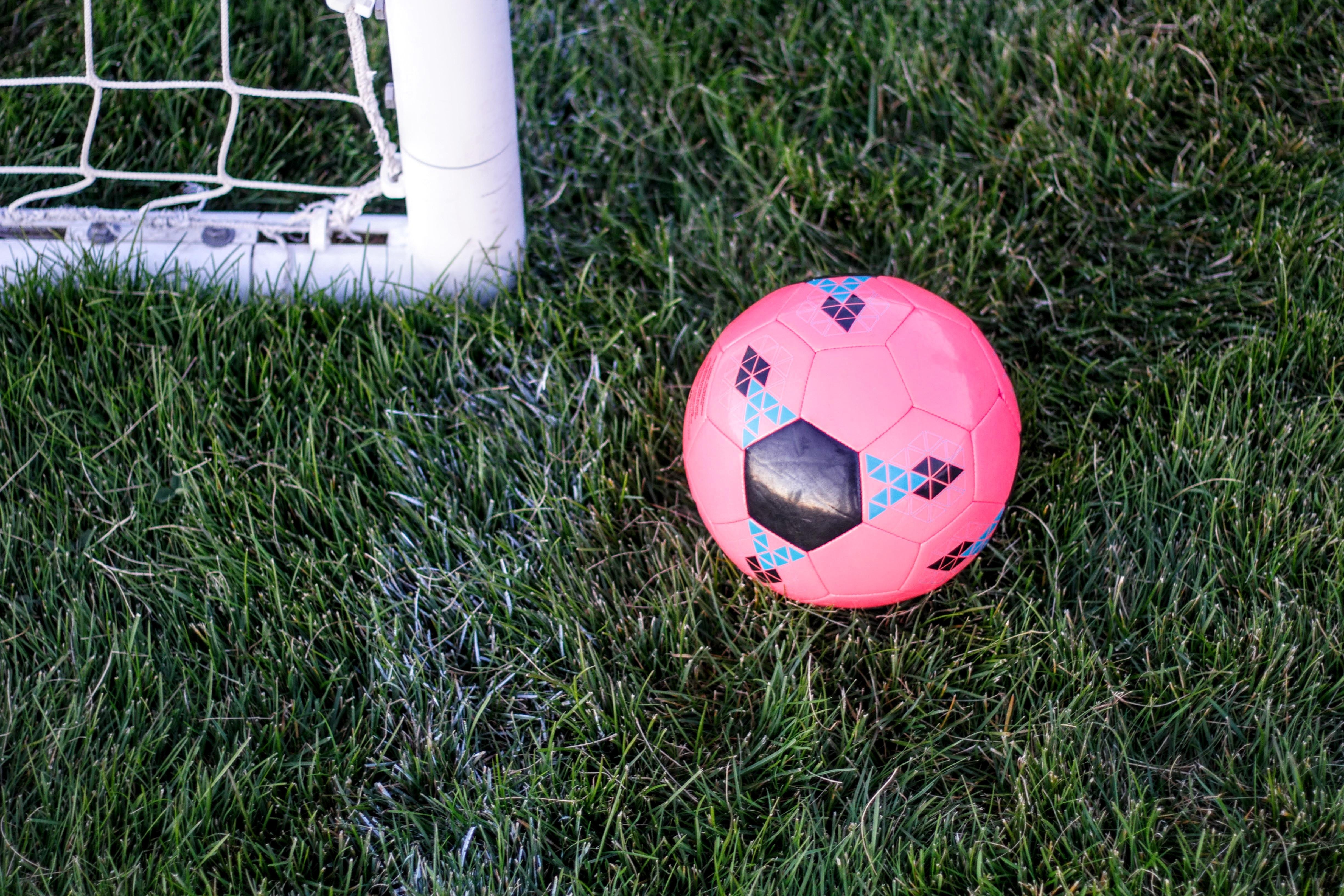 pink rubber ball beside goal net