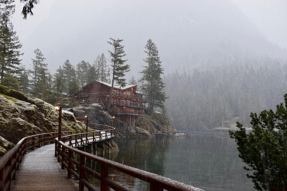 brown wooden lake pathway
