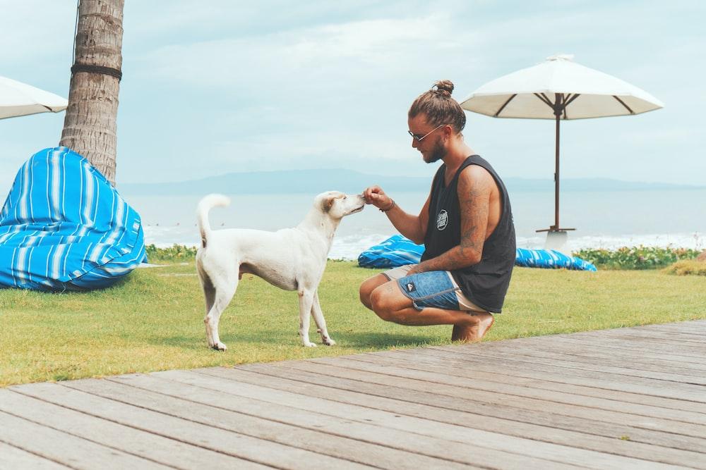 man feeding white dog