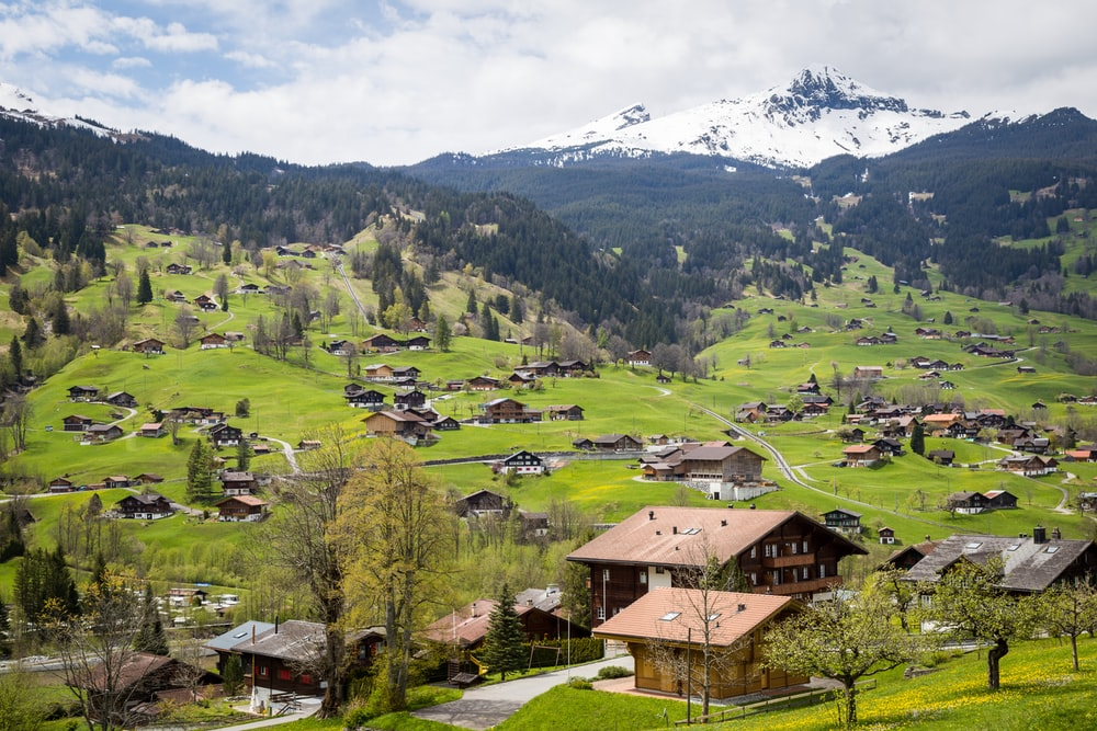 aerial photograph of a village