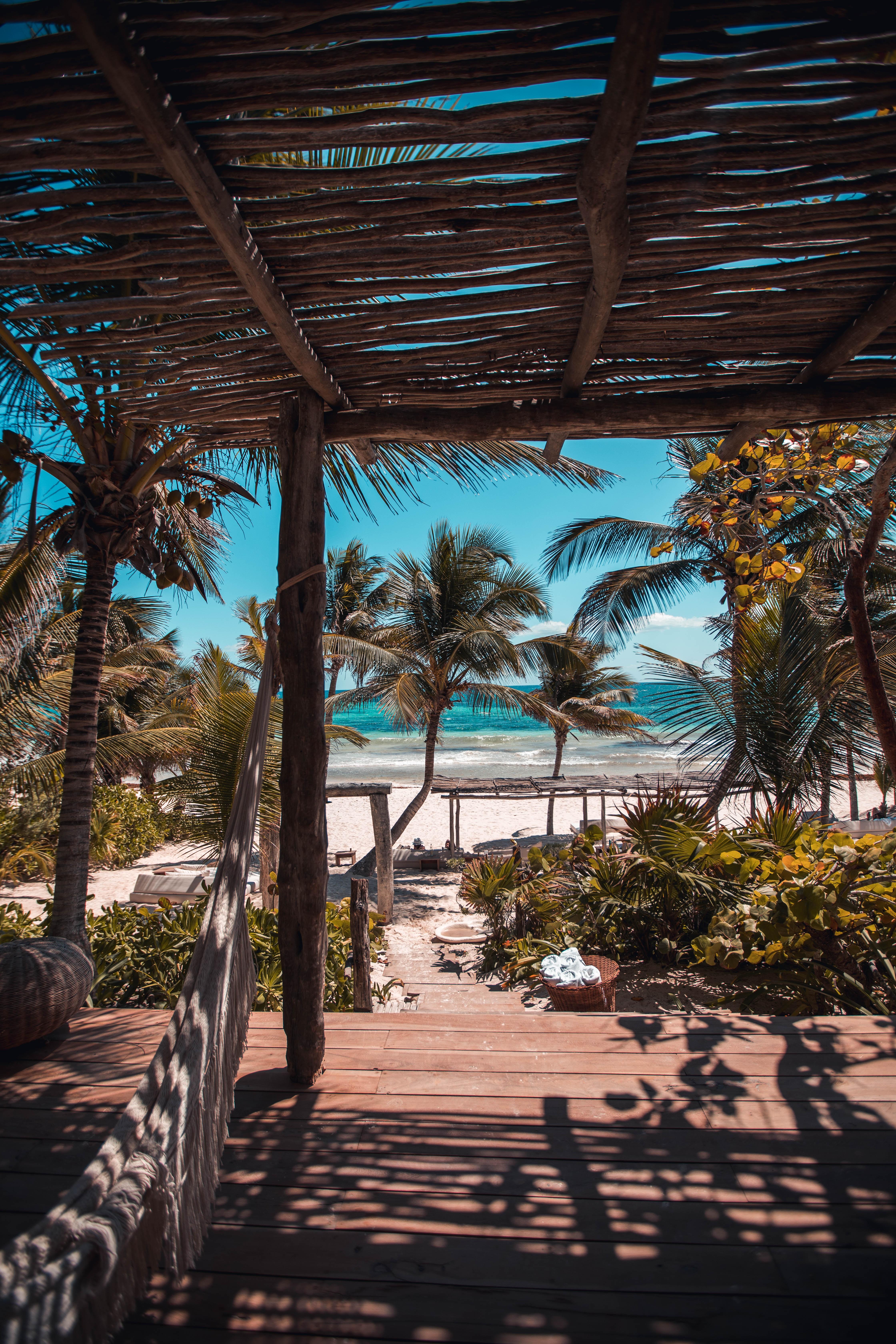 nipa hut under coconut palm trees