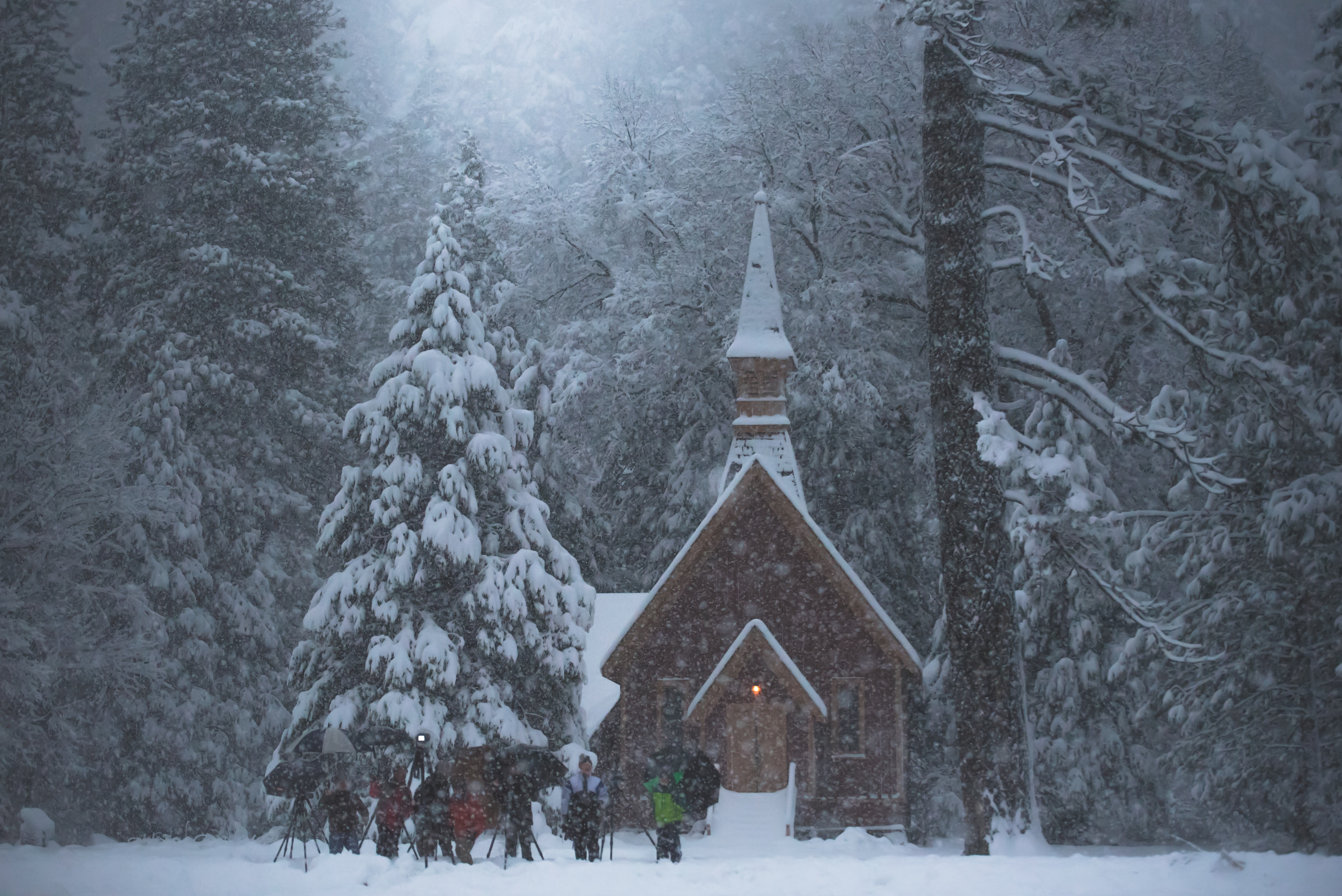 people standing outside church and forest