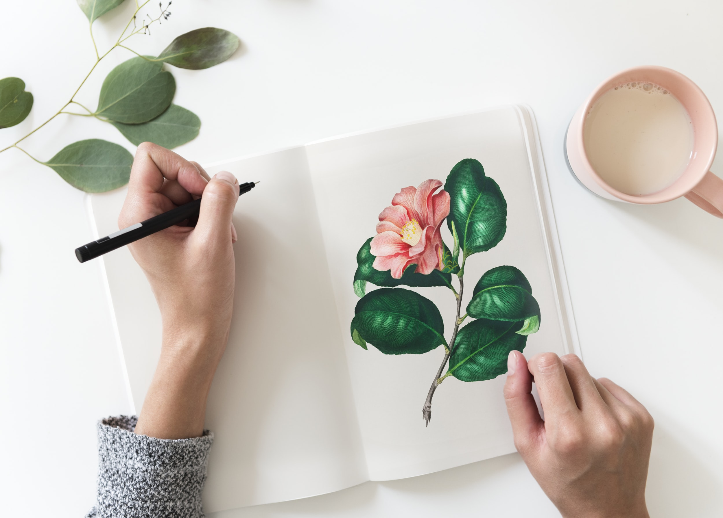 flat lay photo of person drawing pink flower on book