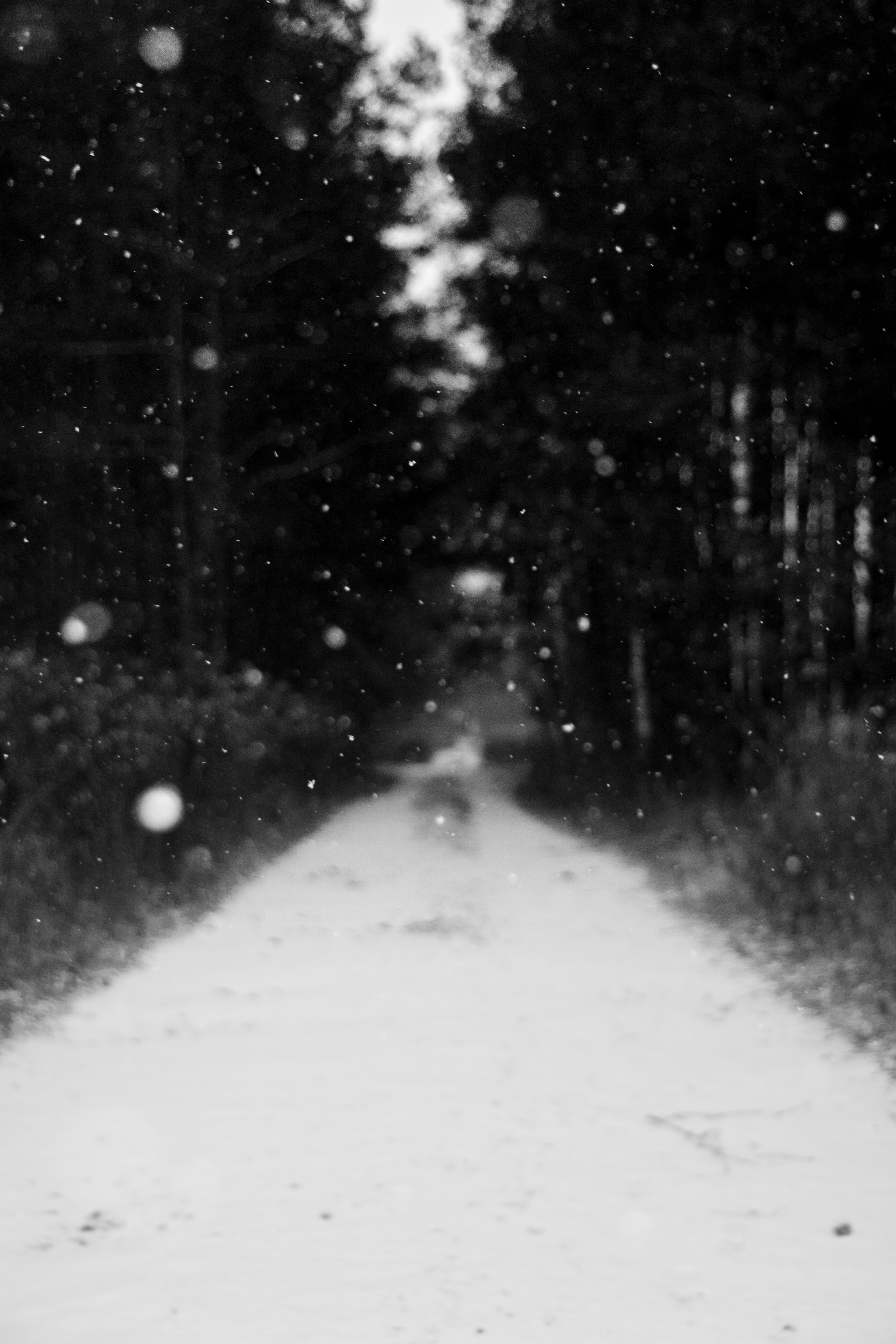 grayscale photo of snow falling