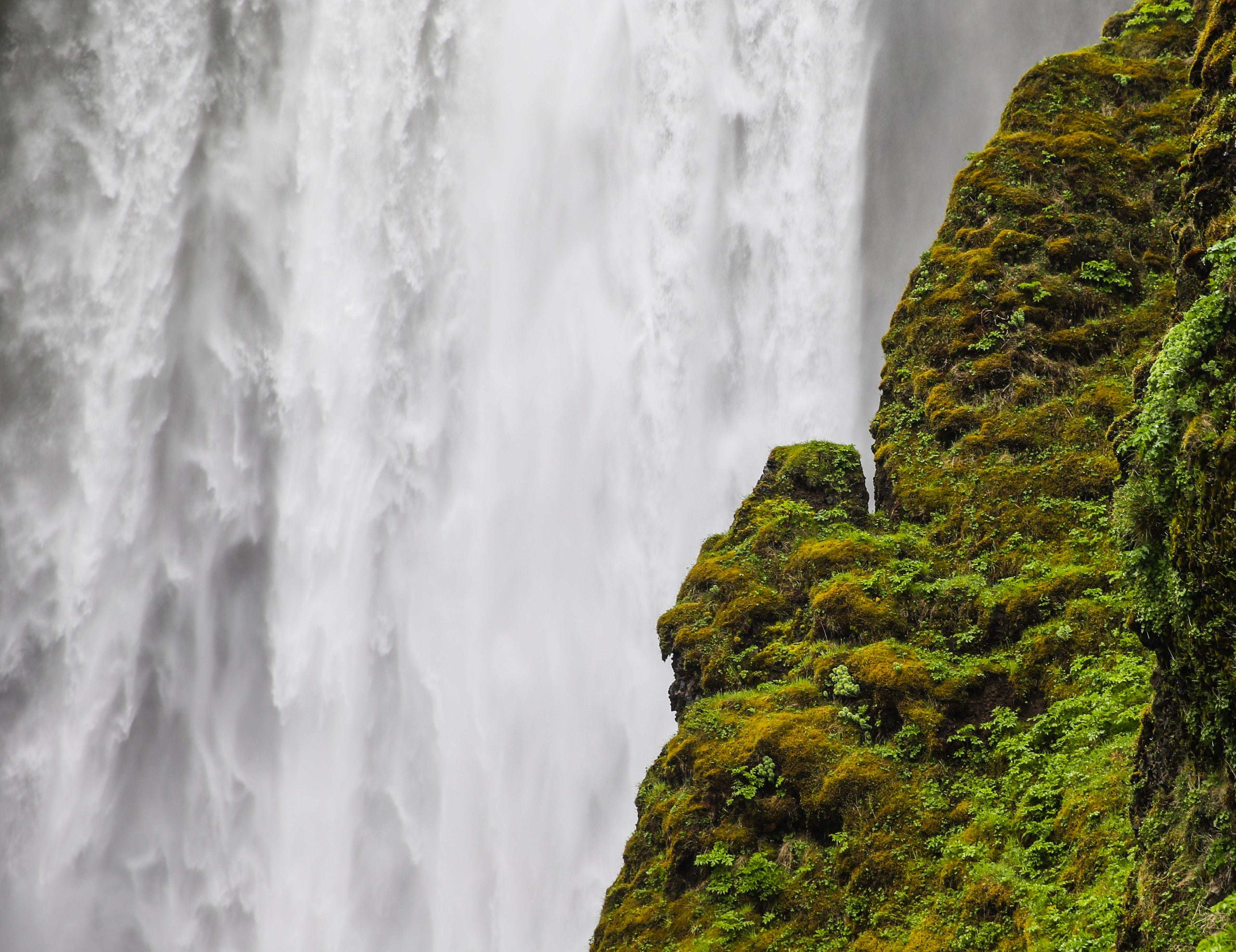 mossy rock near waterfalls