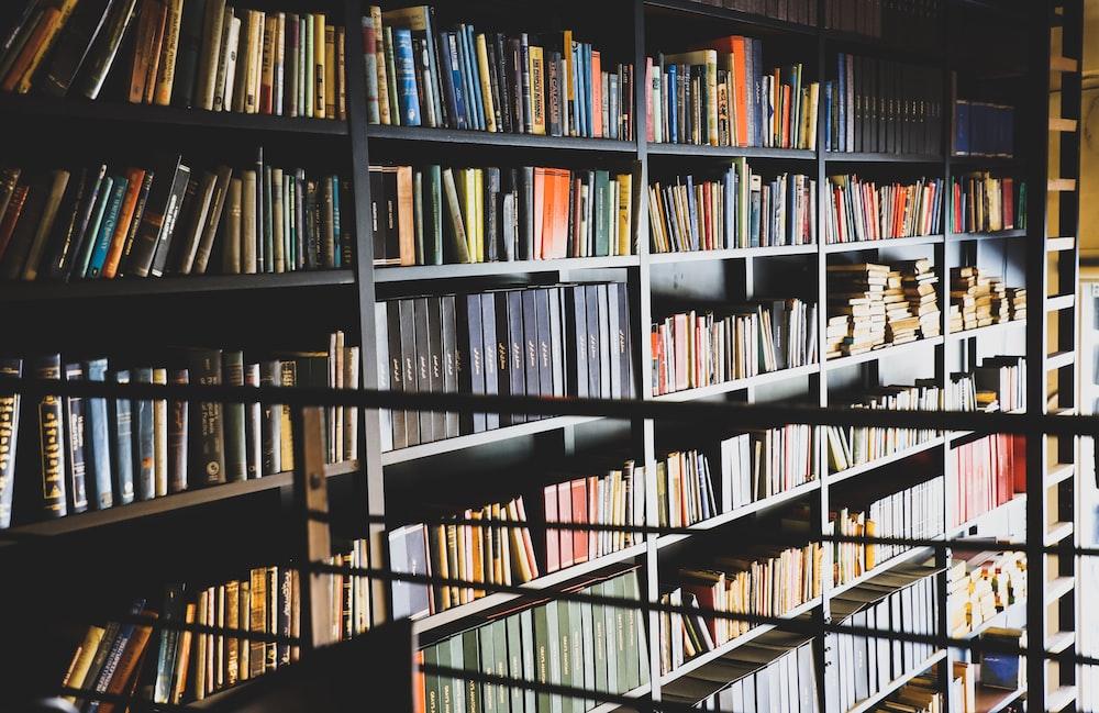 assorted books display on shelf