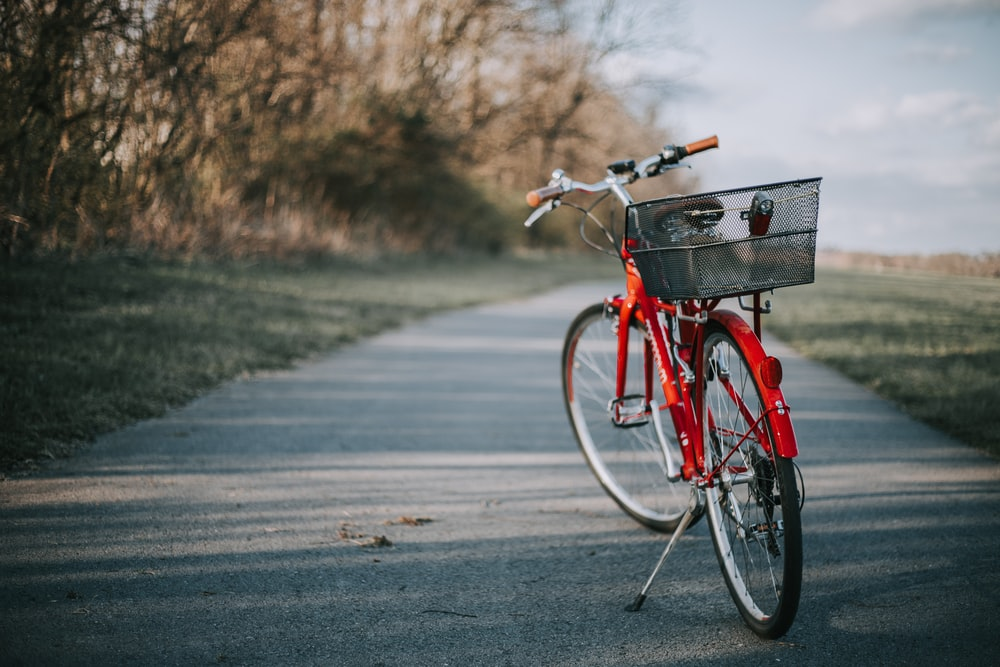 red bicycle on road near trees