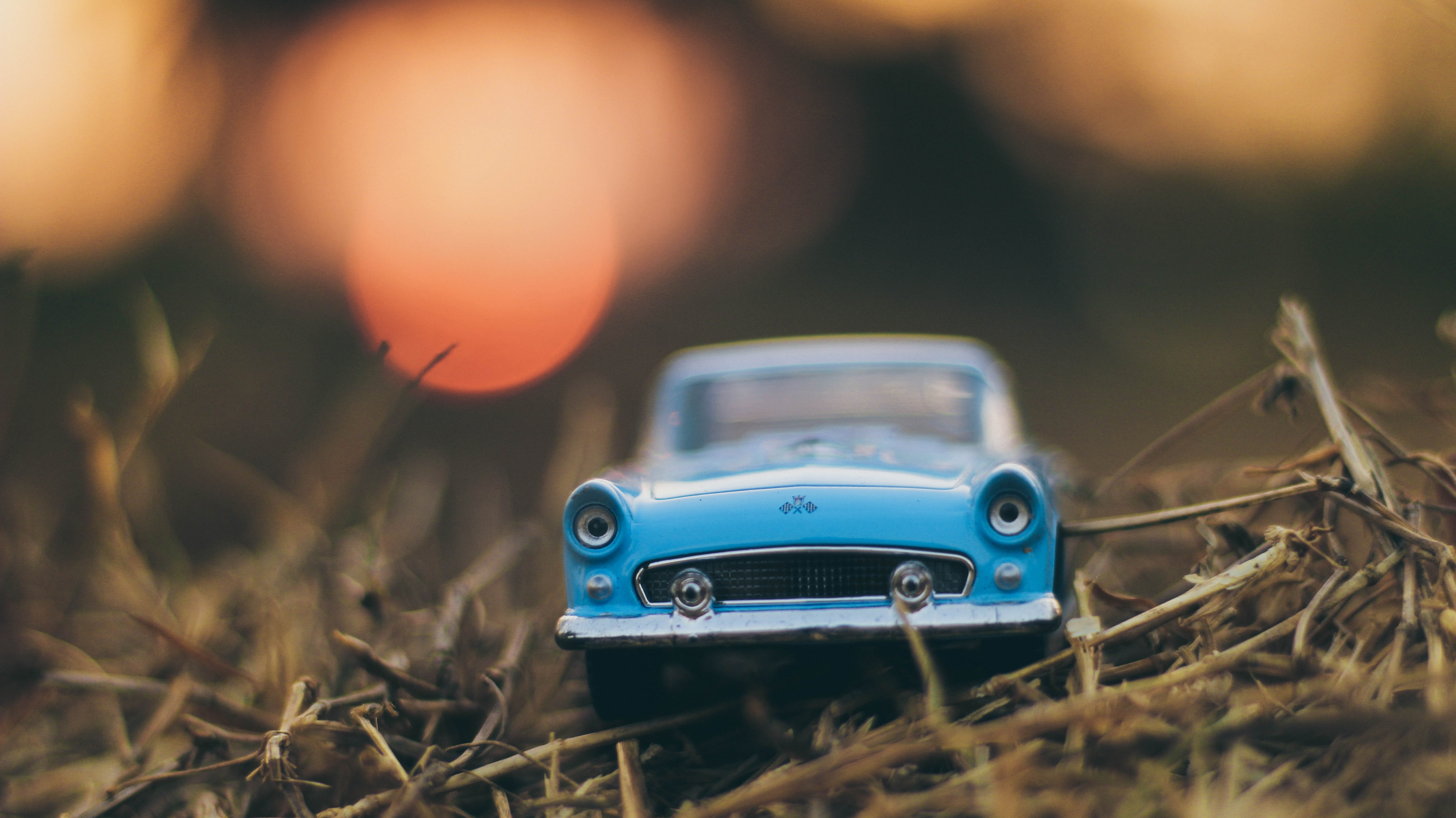 blue toy car on brown grass