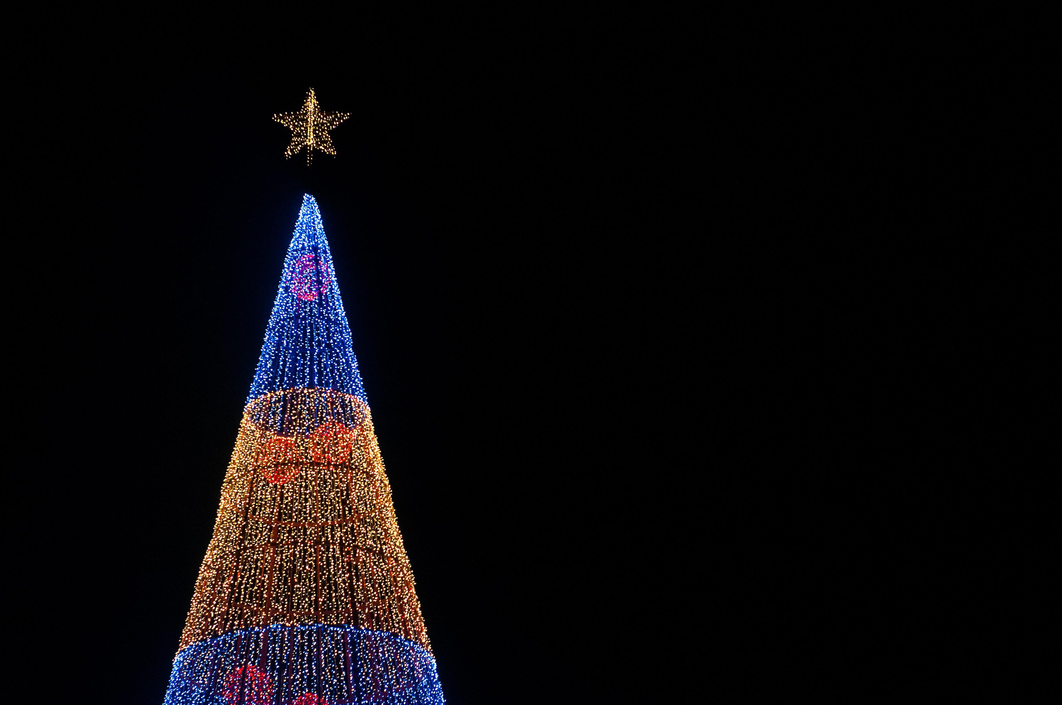 lighted Christmas tree under black sky