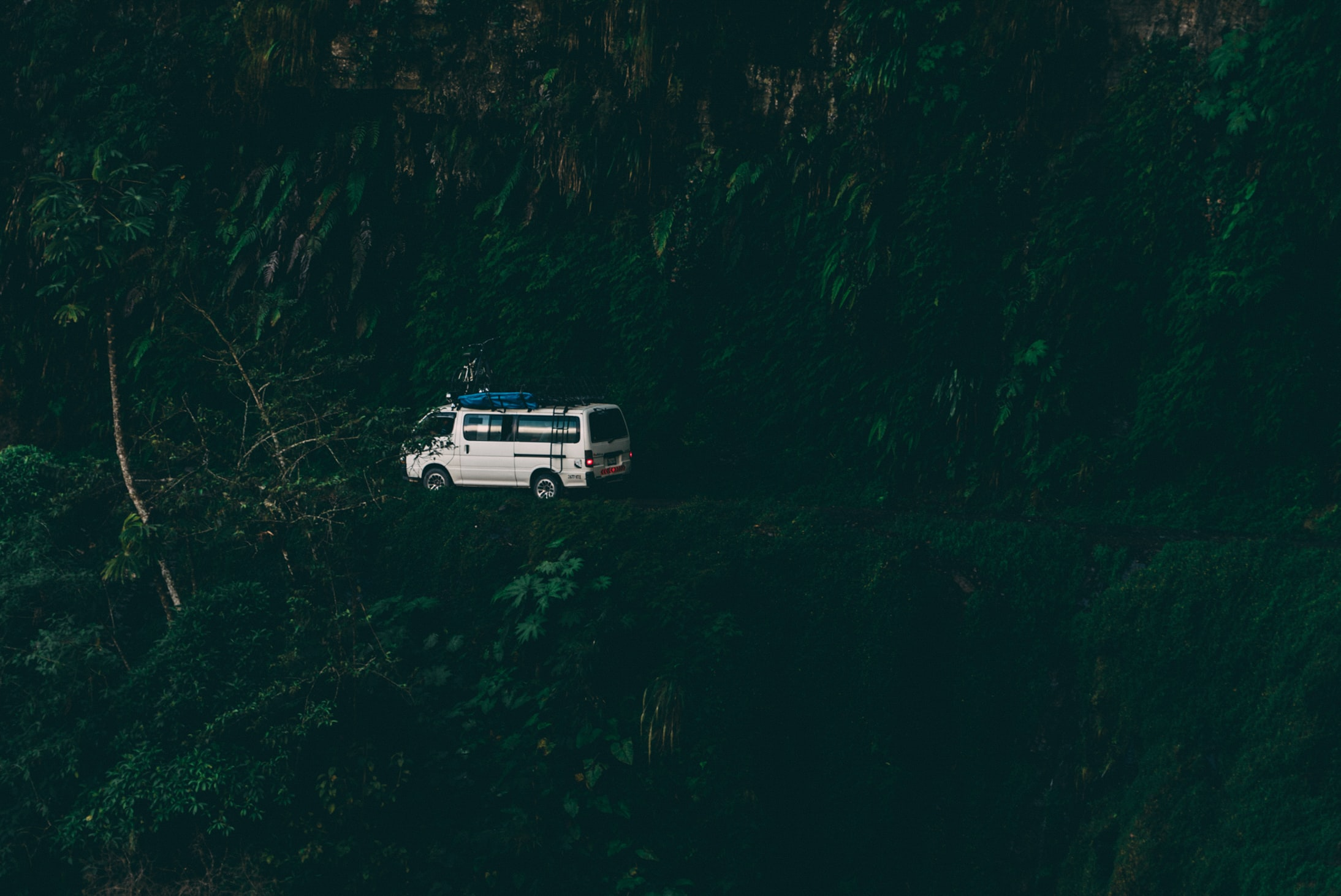 white van surrounded by trees