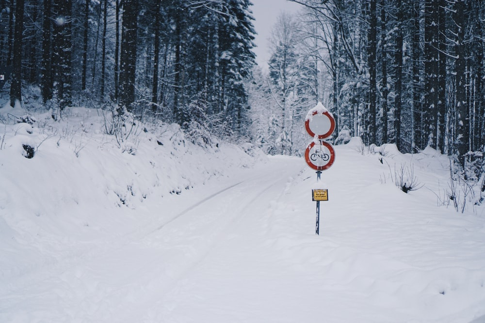 red road signage covered by snow