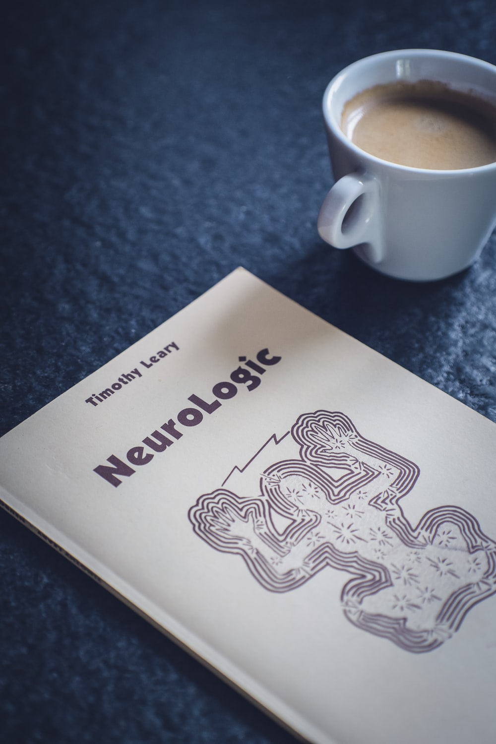 NeuroLogic book