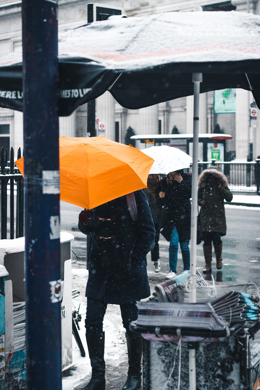 Umbrellas, people, rainy urban day