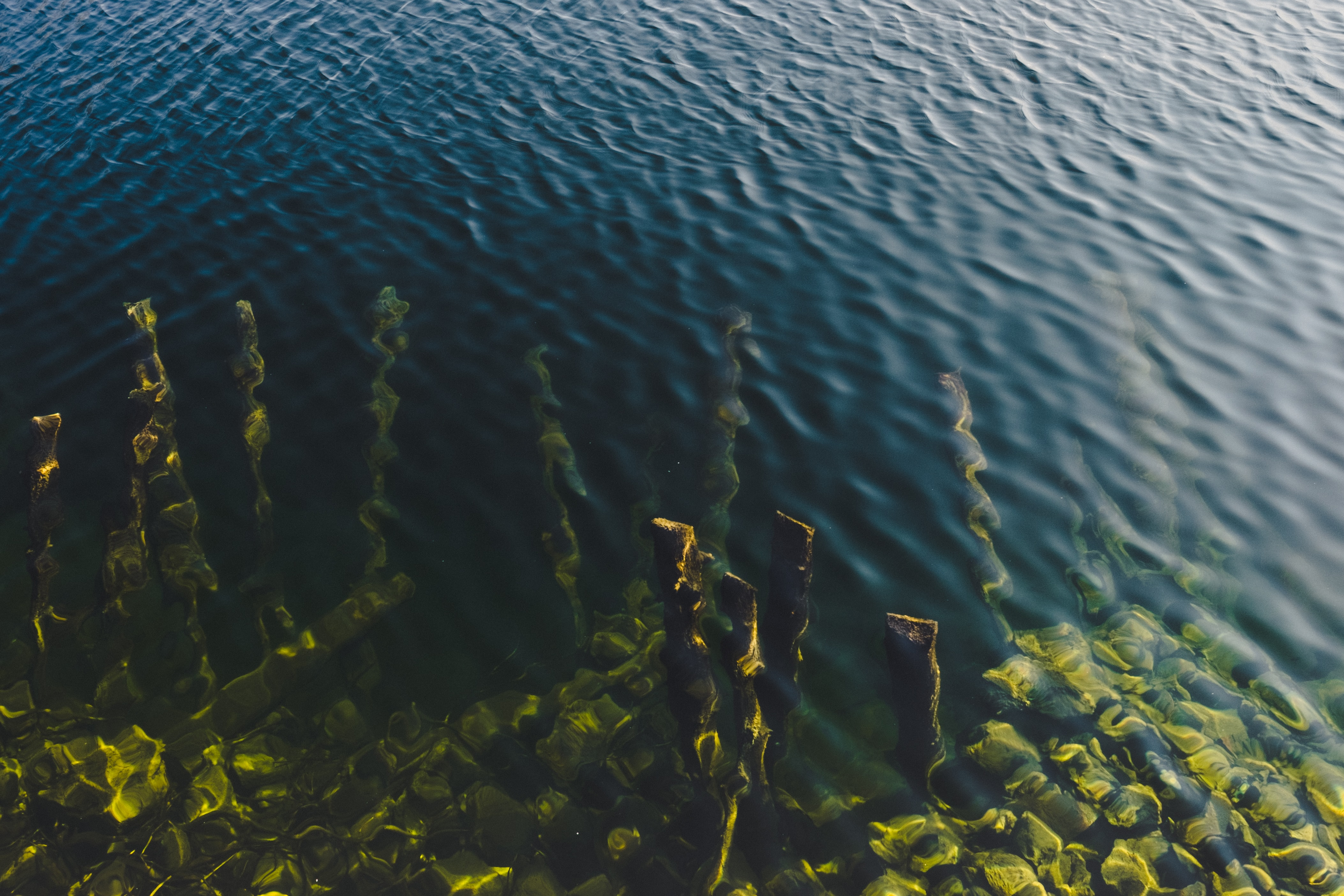 aerial photograph of body of water