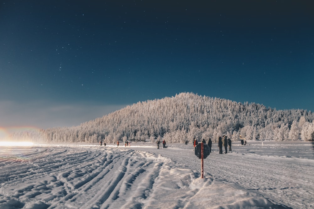 people standing near mountain of trees covered with snow during daytime