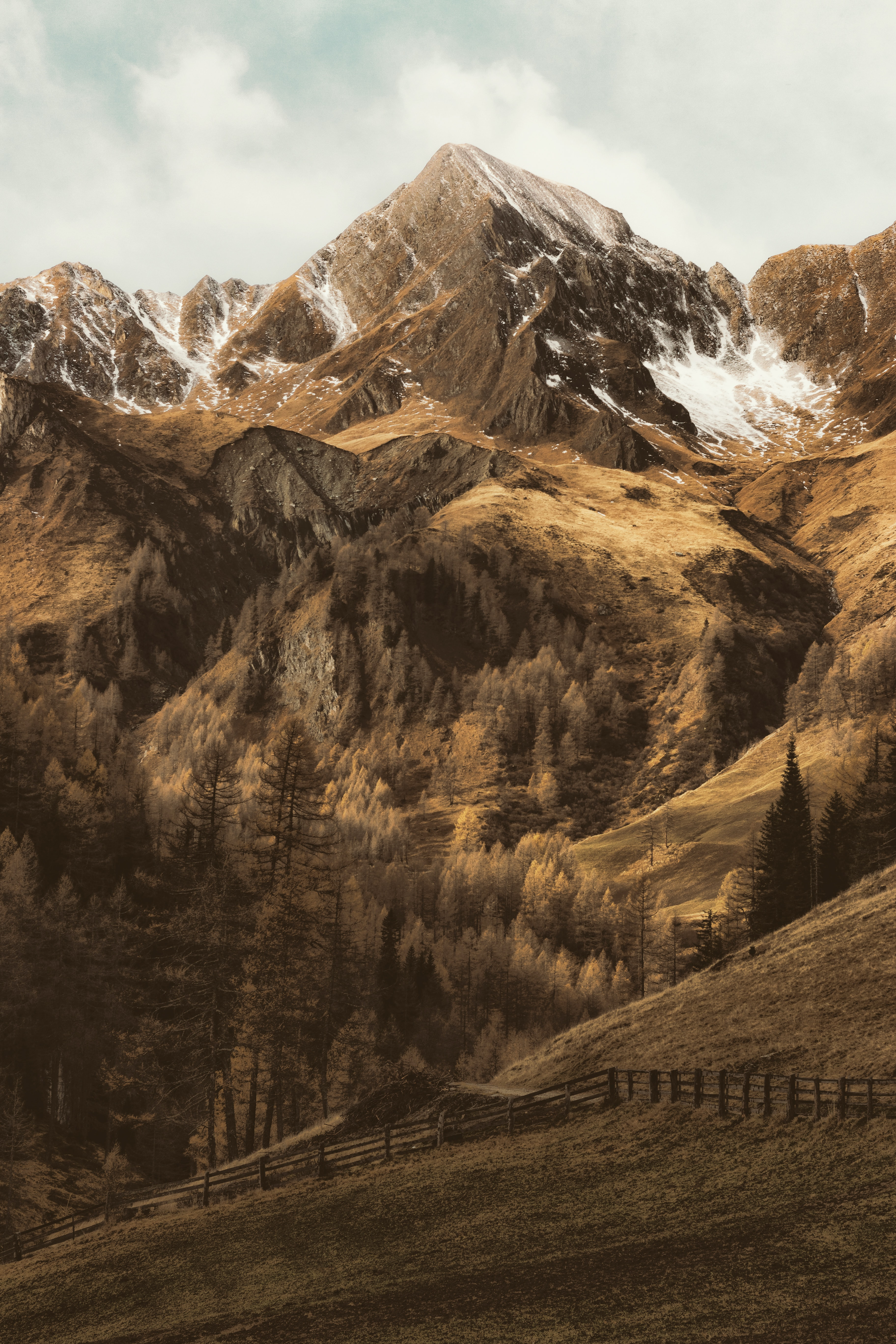 mountains and trees painting