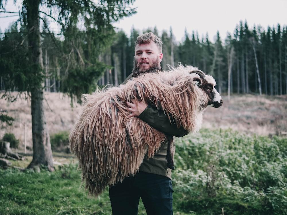 man carrying brown sheep during daytime