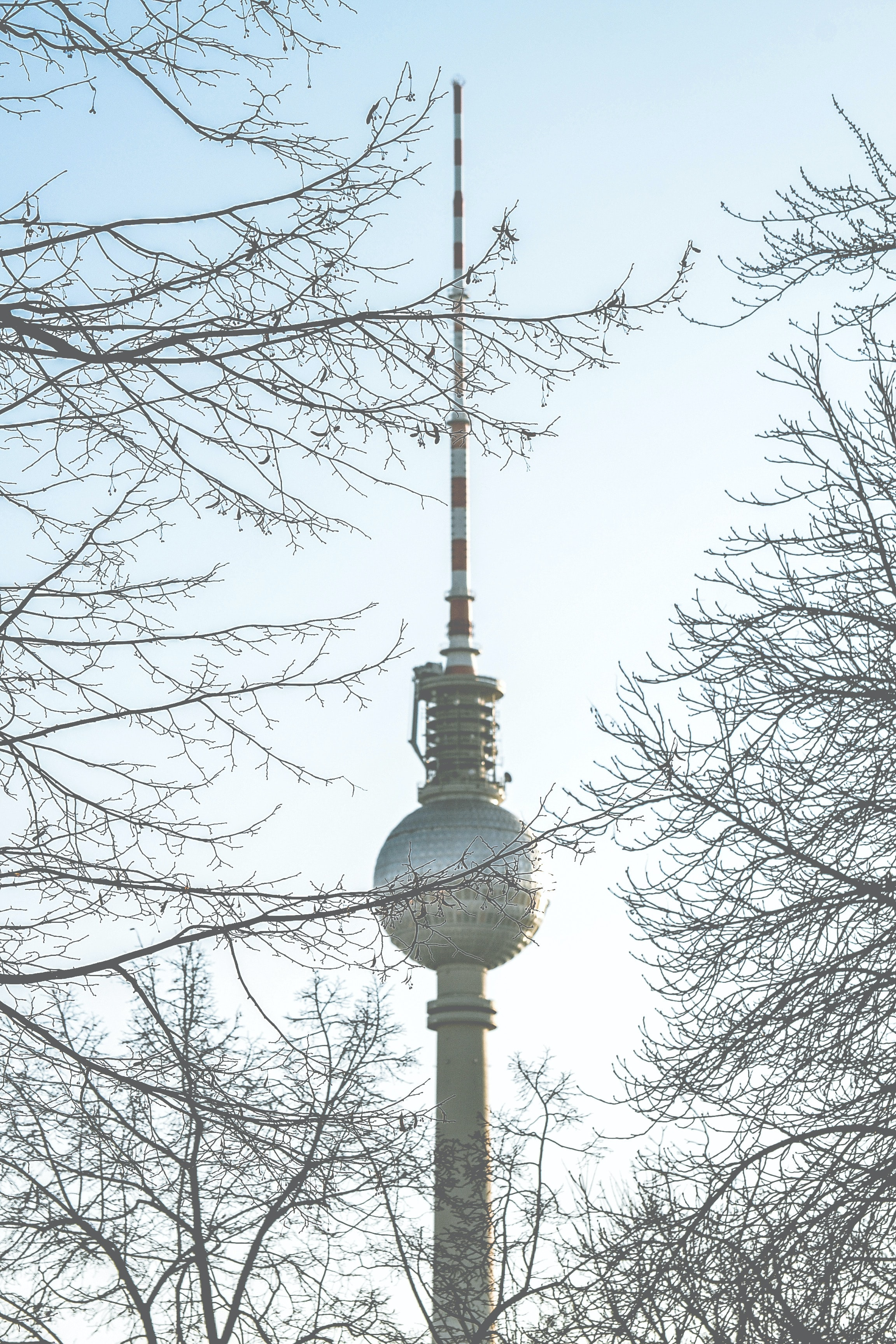 Berlin Tower captured with bare trees under clear blue sky
