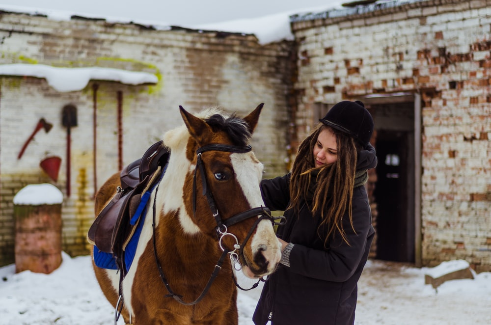 woman holding brown horse's bridle