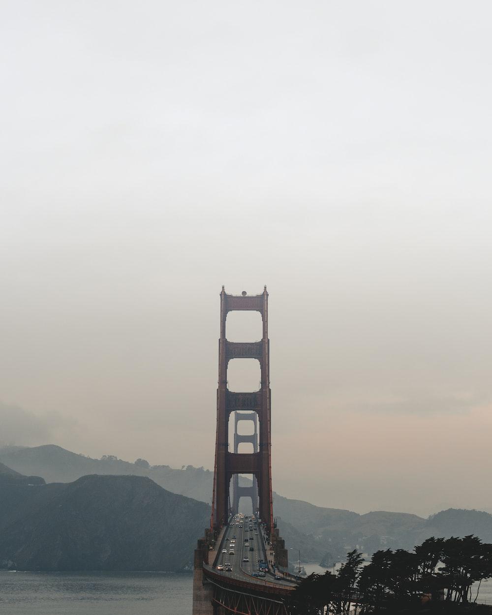 brown gate bridge near hills and trees