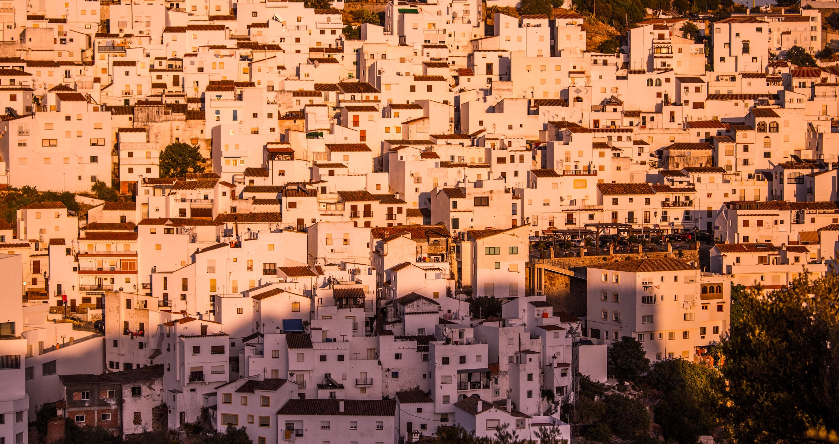 white buildings on hill