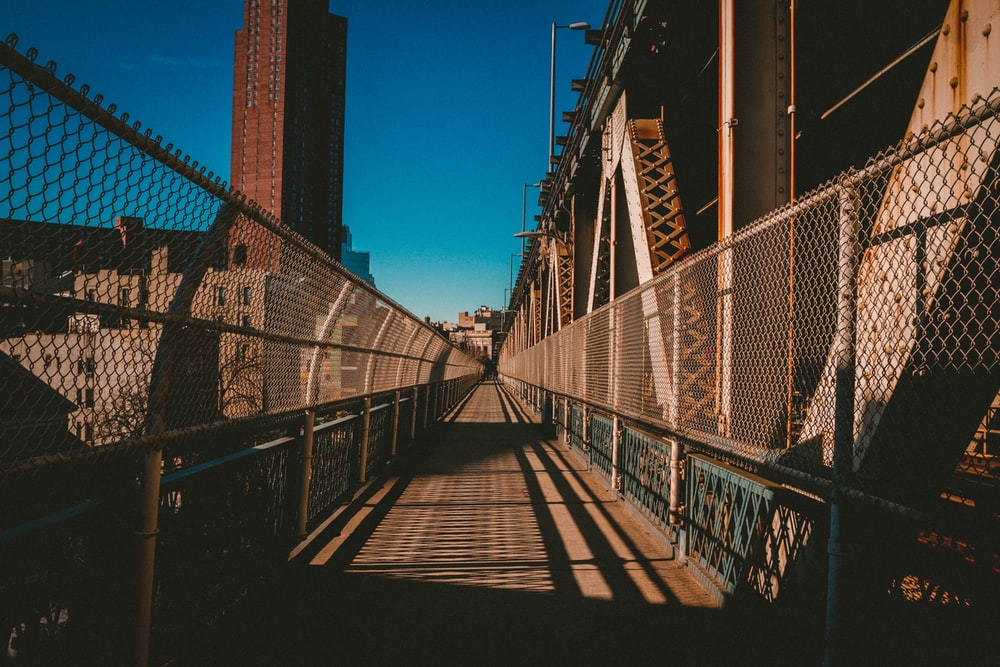 brown and white hanging bridge
