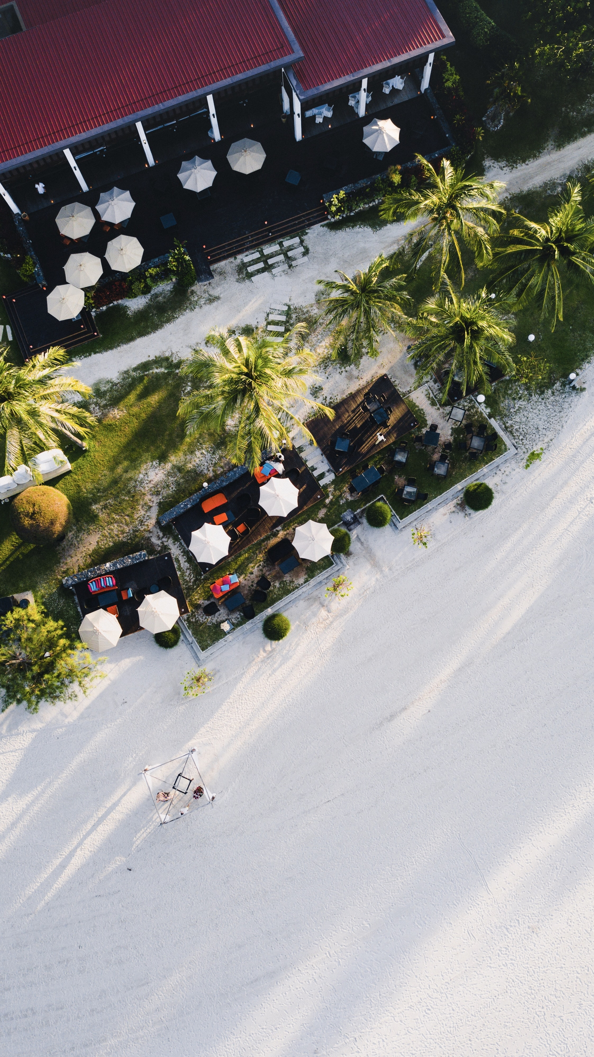 bird's eye photography of patio umbrellas and palm trees