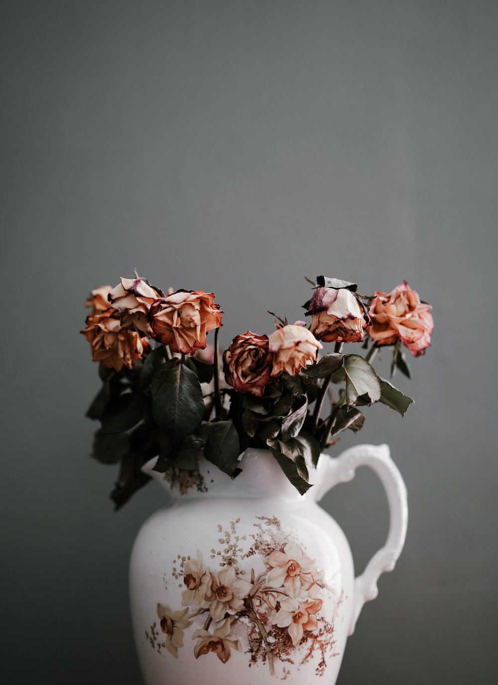 Dead Flowers Pictures Download Free Images On Unsplash