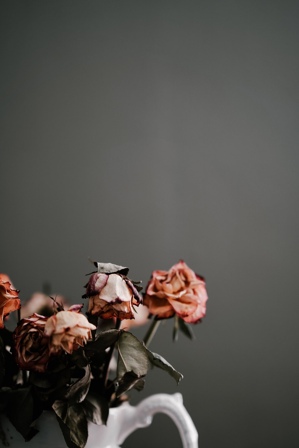 roses on vase