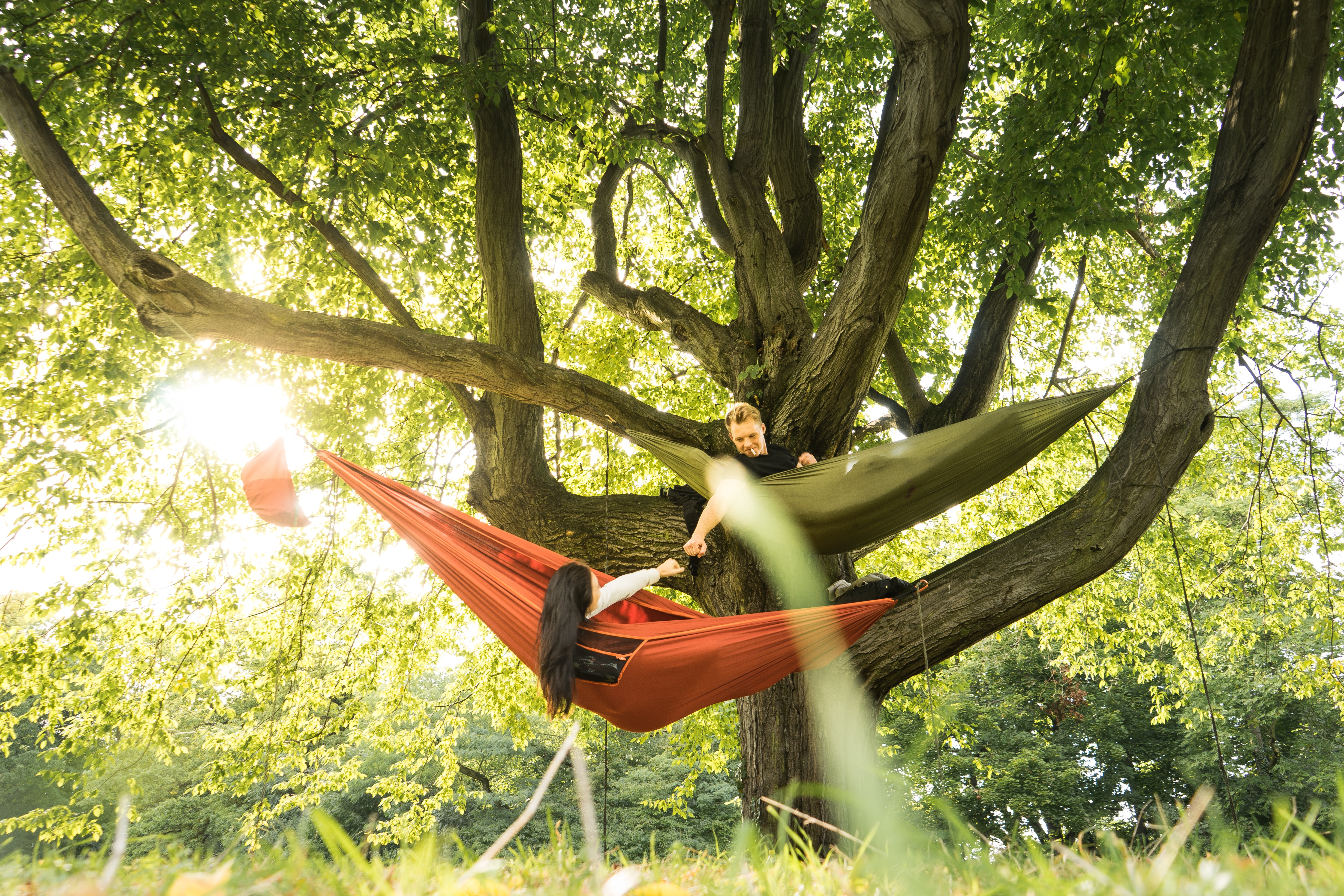 two person on hammock on tree