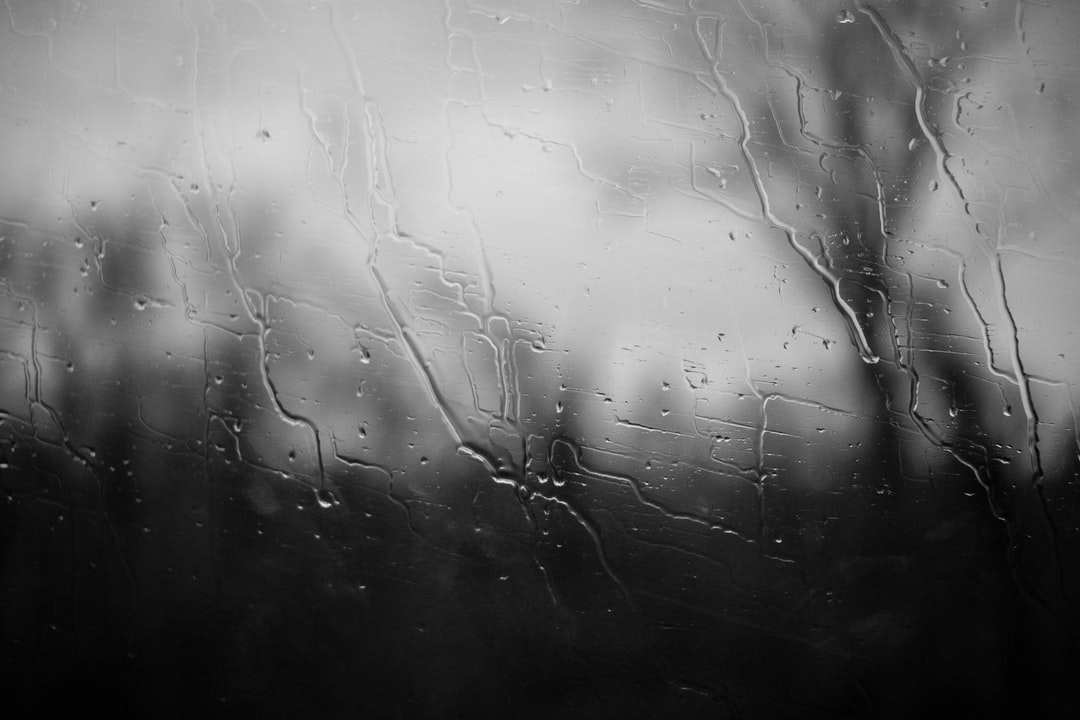 I took this photo while i was on a bus in Albania and it was raining heavily outside. I thought that it would make a good moody photo with the streaks of water from the rain on the glass with silhouette of the trees in the background.