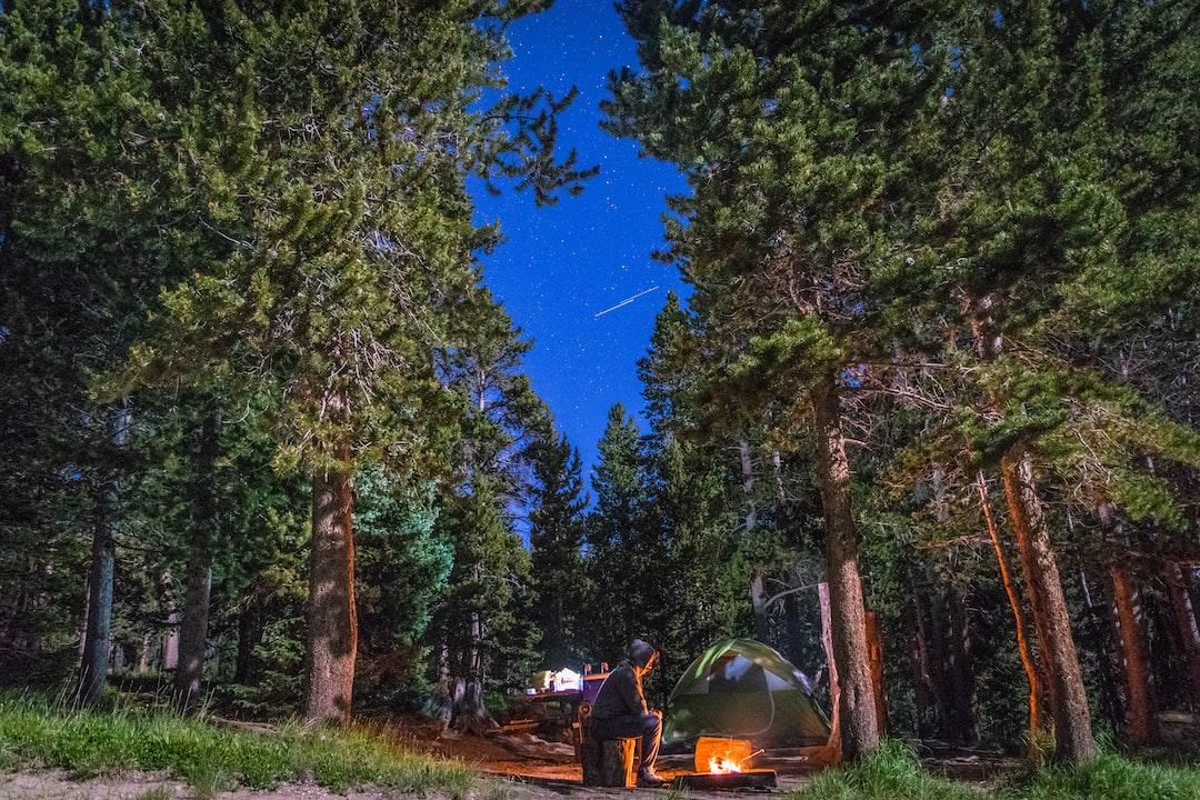 Mountain Campfires