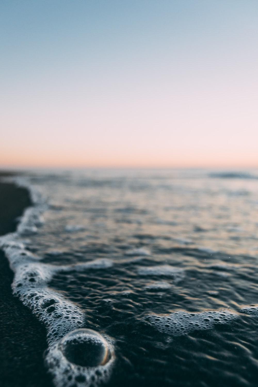 sea shore in closeup photography