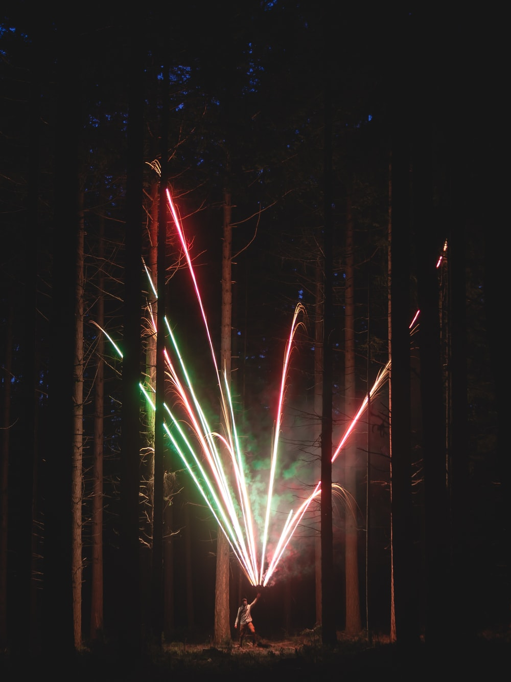 person holding fireworks in the middle of the forest